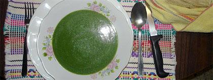 sopa de espinacas vegetariana